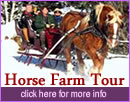 Horse Farm Tour and Sleigh Ride